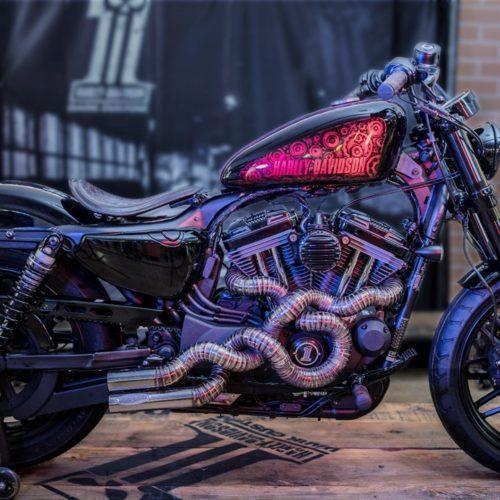Metal Snake da Harley-Davidson campeã ibérica da Battle of the Kings III