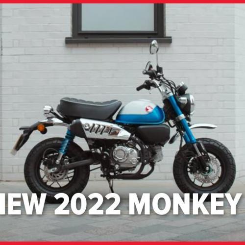 Nova Honda Monkey 2022 (Vídeo Oficial)